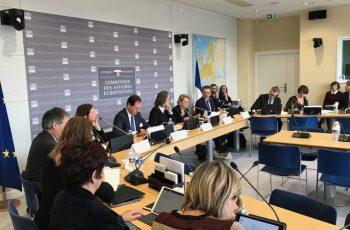 Table Ronde de la Commission des Affaires Européennes de l'Assemblée Nationale : « Pour un Code européen des affaires », 17 janvier 2019